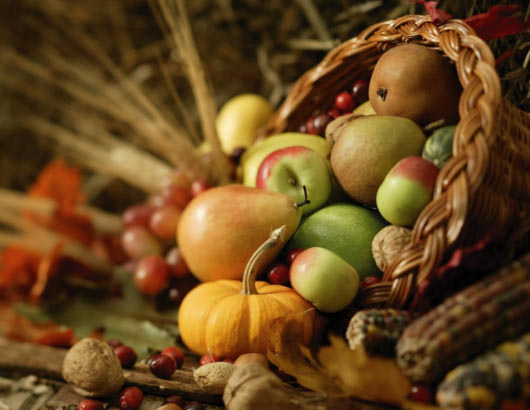 macrobiotica-otoño
